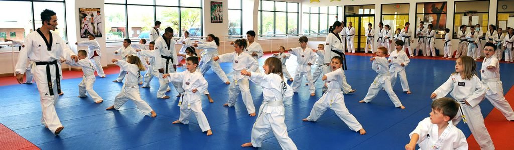 benefits of taekwondo for kids