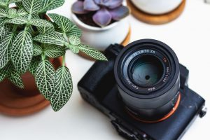 Photography Website Names